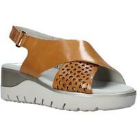 Schoenen Dames Sandalen / Open schoenen CallagHan 26508 Bruin