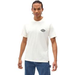 Textiel Heren T-shirts korte mouwen Dickies DK0A4XENECR1 Wit