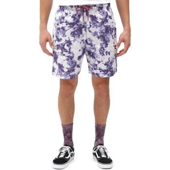 Textiel Heren Korte broeken / Bermuda's Dickies DK0A4XAZB651 Wit