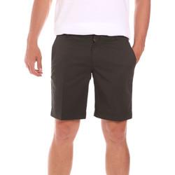 Textiel Heren Korte broeken / Bermuda's Colmar 0864T 8SP Groen