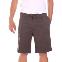 Textiel Heren Korte broeken / Bermuda's Colmar 0867T 8SP Bruin
