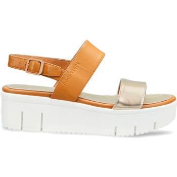 Schoenen Dames Sandalen / Open schoenen Docksteps DSW953101 Bruin