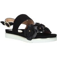 Schoenen Dames Sandalen / Open schoenen Docksteps DSE104965 Zwart