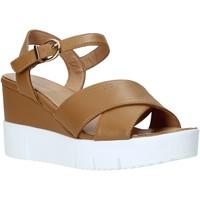 Schoenen Dames Sandalen / Open schoenen Docksteps DSW952001 Bruin
