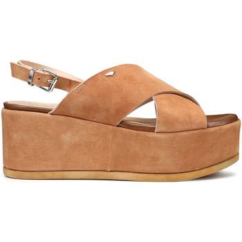Schoenen Dames Sandalen / Open schoenen Alberto Guardiani AGW003001 Bruin