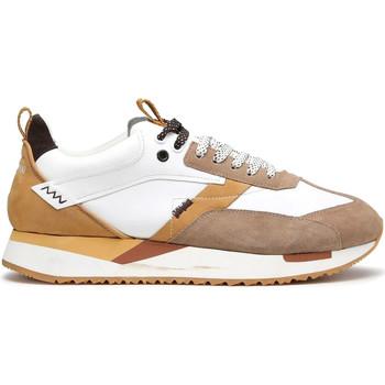 Schoenen Heren Lage sneakers Alberto Guardiani AGU101061 Wit