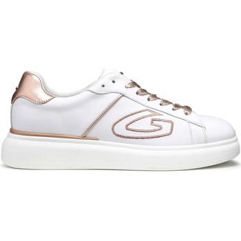 Schoenen Dames Lage sneakers Alberto Guardiani AGU101126 Wit