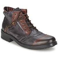 Schoenen Heren Laarzen Kdopa CARLO Brown