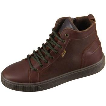 Schoenen Kinderen Hoge sneakers Bisgaard 618062201322 Marron