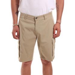 Textiel Heren Korte broeken / Bermuda's Colmar 0866T 8SP Beige