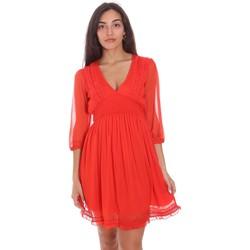Textiel Dames Korte jurken Fracomina FR21SD1007W42301 Rood