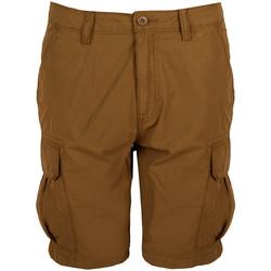 Textiel Heren Korte broeken / Bermuda's Napapijri  Brown