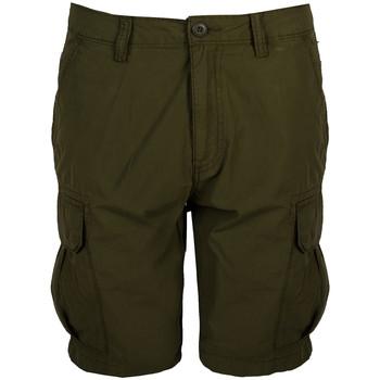 Textiel Heren Korte broeken / Bermuda's Napapijri  Groen