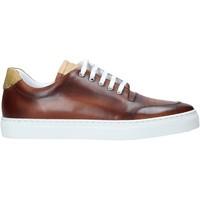 Schoenen Heren Lage sneakers Alviero Martini P177 578A Bruin