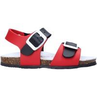 Schoenen Kinderen Sandalen / Open schoenen Bionatura LUCA Rood
