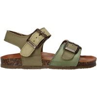 Schoenen Kinderen Sandalen / Open schoenen Bionatura LUCA Groen