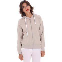 Textiel Dames Sweaters / Sweatshirts Invicta 4454271/D Grijs