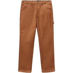 Textiel Dames 5 zakken broeken Dickies DK0A4XJHBD01 Bruin