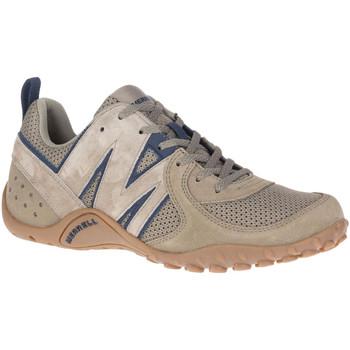 Schoenen Heren Lage sneakers Merrell J561999 Beige