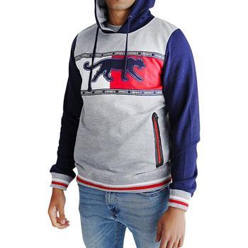 Textiel Heren Sweaters / Sweatshirts Airness  Grijs