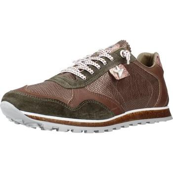 Schoenen Dames Lage sneakers Cetti C848SRA V21 Bruin