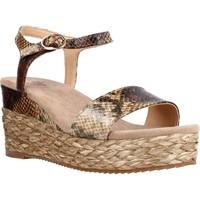 Schoenen Dames Sandalen / Open schoenen Alma Blue BL6200 Bruin