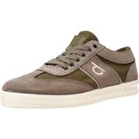 Schoenen Dames Lage sneakers Duuo NEW PERE 02 Bruin