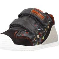 Schoenen Jongens Hoge sneakers Biomecanics 211150 Bruin