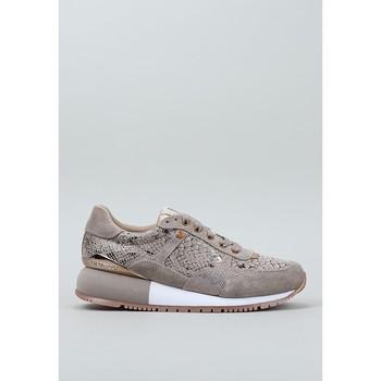 Schoenen Dames Lage sneakers Gioseppo, S.l.  Beige