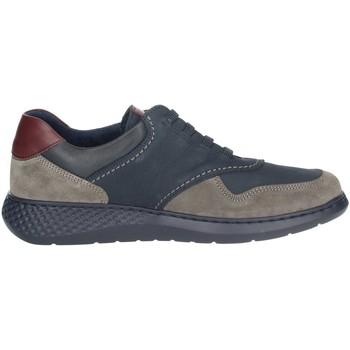 Schoenen Heren Lage sneakers Notton 158 Blue