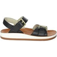 Schoenen Dames Sandalen / Open schoenen Novaflex FALMENTA Black