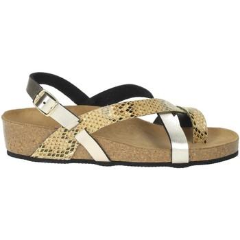Schoenen Dames Sandalen / Open schoenen Novaflex BOZZOLE Platinum