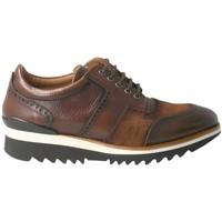 Schoenen Heren Lage sneakers Calce  Marrón