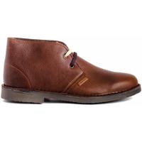 Schoenen Heren Laarzen Colour Feet MOGAMBO WARM Brown