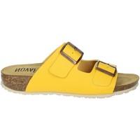 Schoenen Dames Leren slippers Novaflex FELETTO Yellow