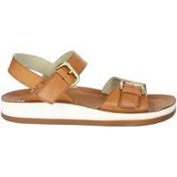 Schoenen Dames Sandalen / Open schoenen Novaflex FALMENTA Brown leather
