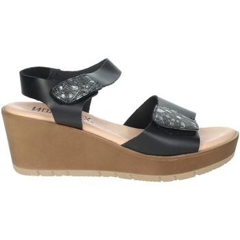 Schoenen Dames Sandalen / Open schoenen Novaflex BASSIGNANA Black