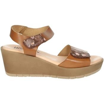 Schoenen Dames Sandalen / Open schoenen Novaflex BASSIGNANA Brown leather