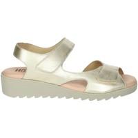 Schoenen Dames Sandalen / Open schoenen Novaflex BASSIANO Platinum