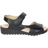 Schoenen Dames Sandalen / Open schoenen Novaflex BASSANO Black