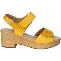 Schoenen Dames Sandalen / Open schoenen Novaflex BASCHI Mustard