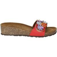 Schoenen Dames Leren slippers Novaflex AMPEZZO Red