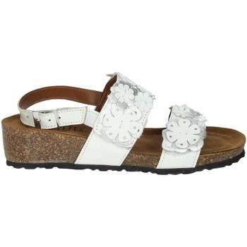 Schoenen Dames Sandalen / Open schoenen Novaflex AMENDOLARA White