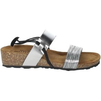 Schoenen Dames Sandalen / Open schoenen Novaflex AMEGLIA Steel grey