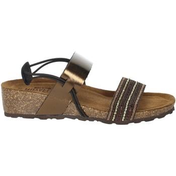 Schoenen Dames Sandalen / Open schoenen Novaflex AMBIVERE Bronze