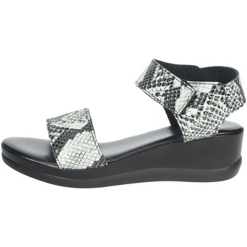 Schoenen Dames Sandalen / Open schoenen Novaflex ACERNO White/Black