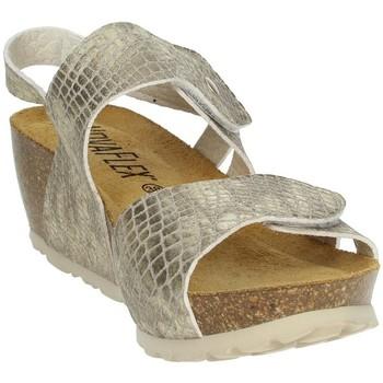 Schoenen Dames Sandalen / Open schoenen Novaflex FERENTILLO Platinum