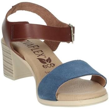 Schoenen Dames Sandalen / Open schoenen Novaflex BARBIANELLO Brown leather