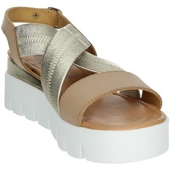 Schoenen Dames Sandalen / Open schoenen Novaflex AGRA Brown leather