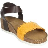 Schoenen Dames Sandalen / Open schoenen Novaflex AGLIENTU Mustard